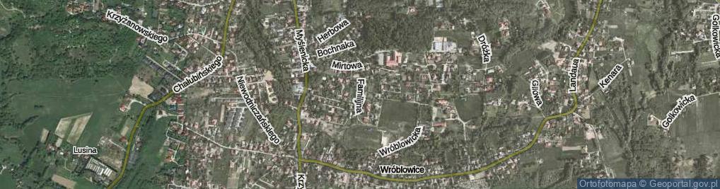 Zdjęcie satelitarne Familijna ul.