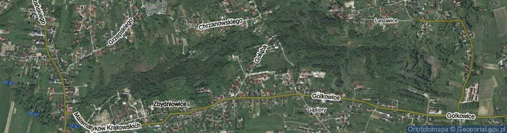 Zdjęcie satelitarne Gołąba Stanisława ul.