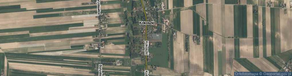 Zdjęcie satelitarne Kokoszki ul.