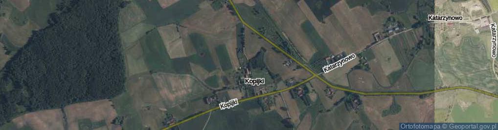 Zdjęcie satelitarne Kopijki ul.