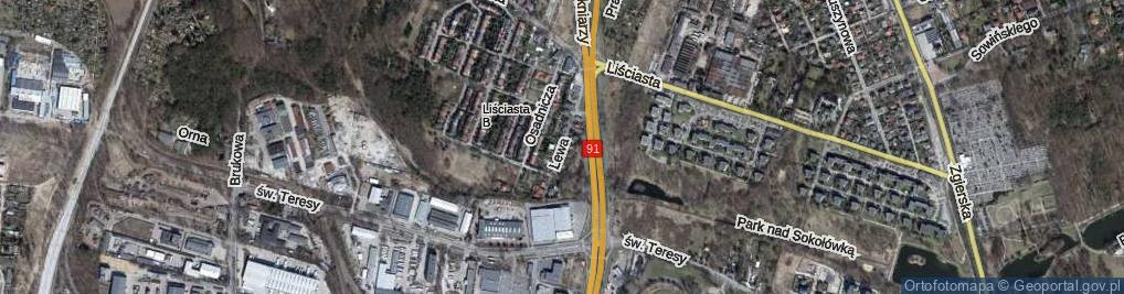 Zdjęcie satelitarne Lewa ul.