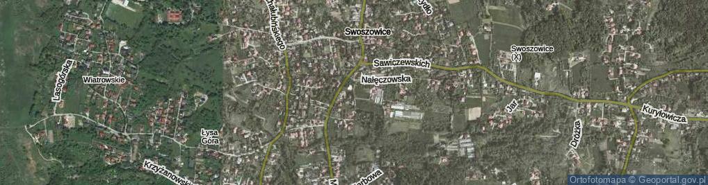 Zdjęcie satelitarne Lecznicza ul.