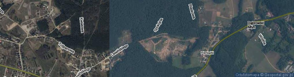 Zdjęcie satelitarne Lewińskiego Stefana ul.