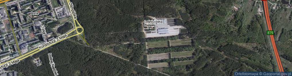 Zdjęcie satelitarne Leśny Trakt ul.