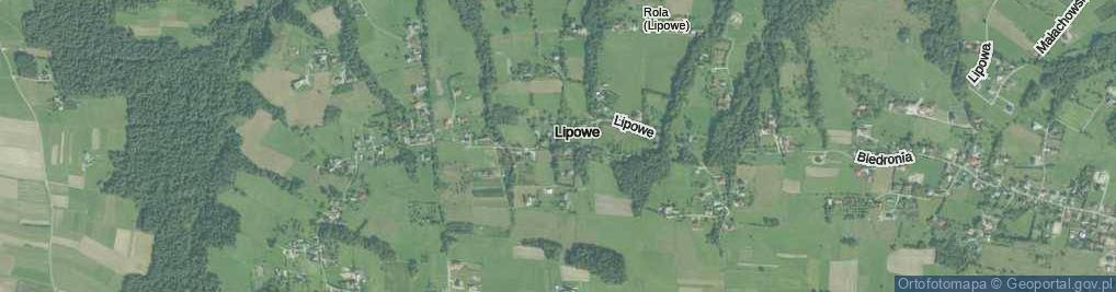 Zdjęcie satelitarne Lipowe ul.
