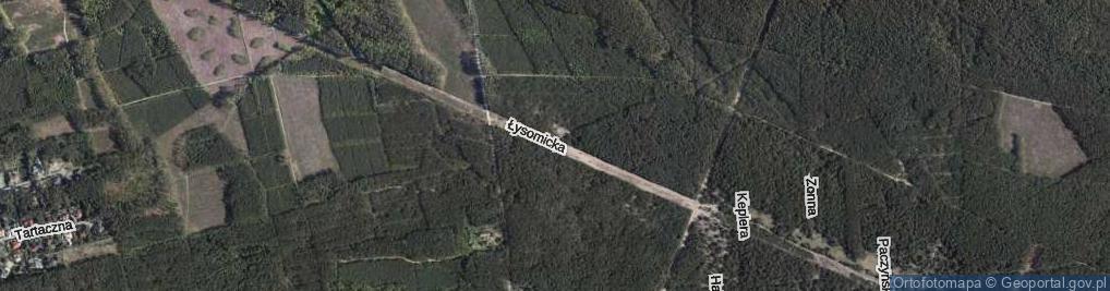 Zdjęcie satelitarne Łysomicka ul.