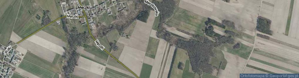 Zdjęcie satelitarne Męczkowska ul.