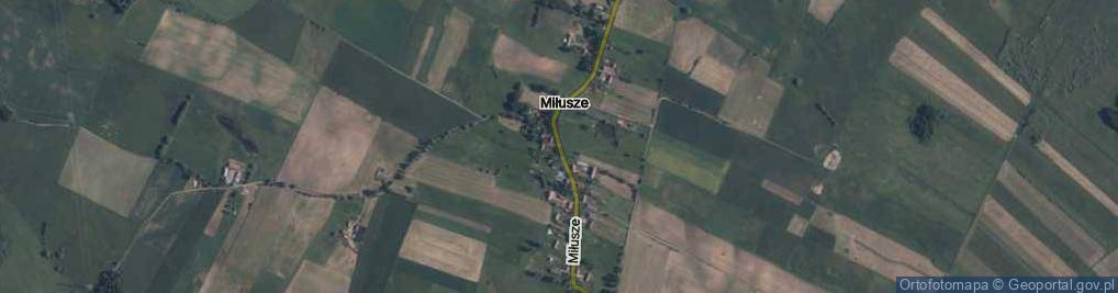 Zdjęcie satelitarne Miłusze ul.