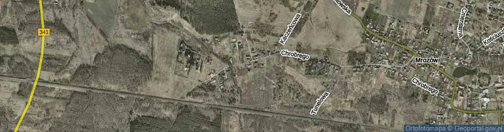 Zdjęcie satelitarne Myszołowia ul.