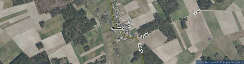 Zdjęcie satelitarne Nieławice ul.