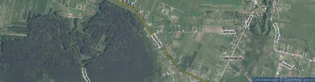 Zdjęcie satelitarne Niwecka ul.