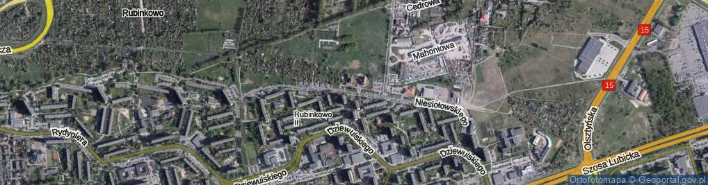 Zdjęcie satelitarne Niesiołowskiego Tymona ul.
