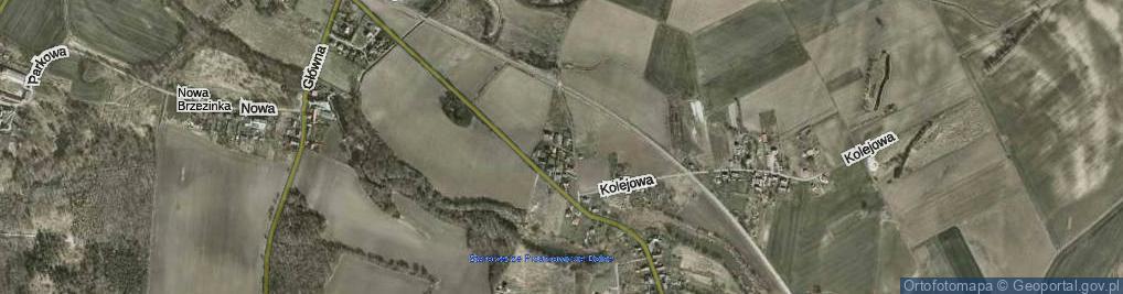 Zdjęcie satelitarne Nowa ul.