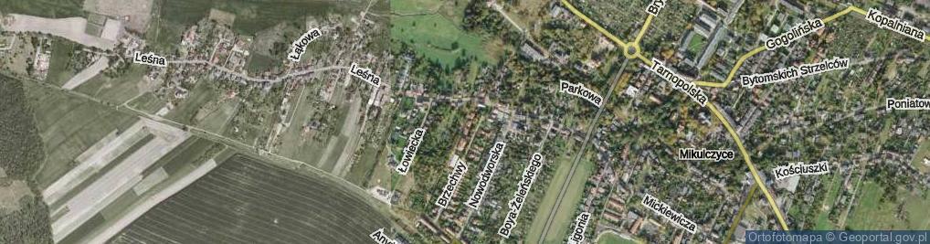 Zdjęcie satelitarne Ogórka Stanisława ul.