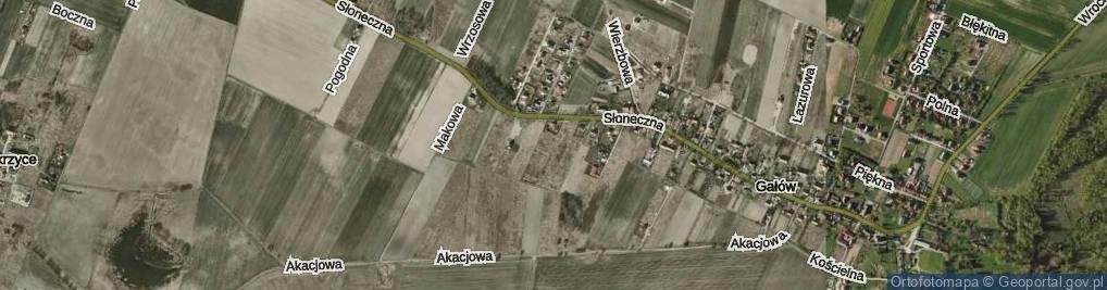 Zdjęcie satelitarne Oliwkowa ul.