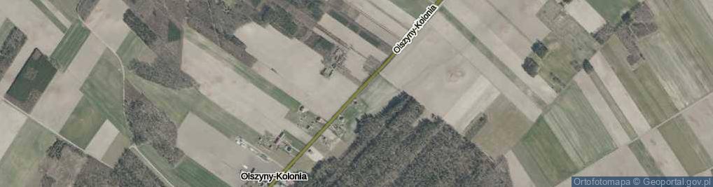 Zdjęcie satelitarne Olszyny-Kolonia ul.
