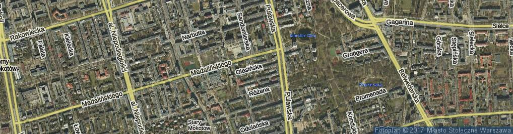 Zdjęcie satelitarne Olesińska ul.