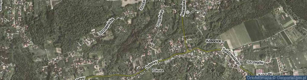 Zdjęcie satelitarne Orszańska ul.