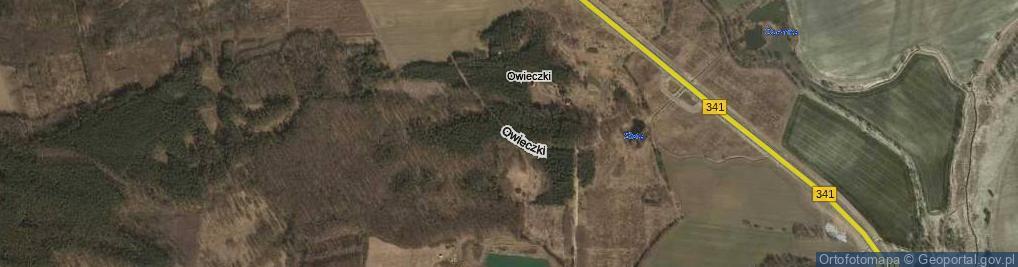 Zdjęcie satelitarne Owieczki ul.