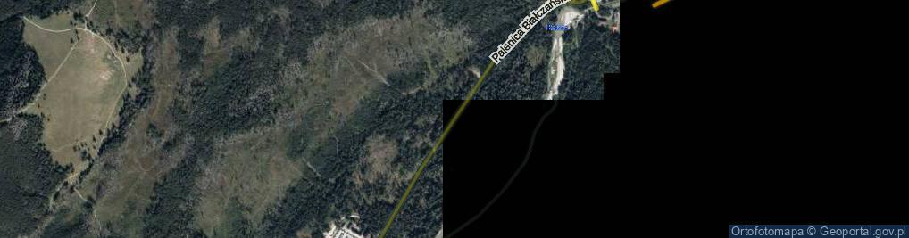 Zdjęcie satelitarne Palenica Białczańska ul.