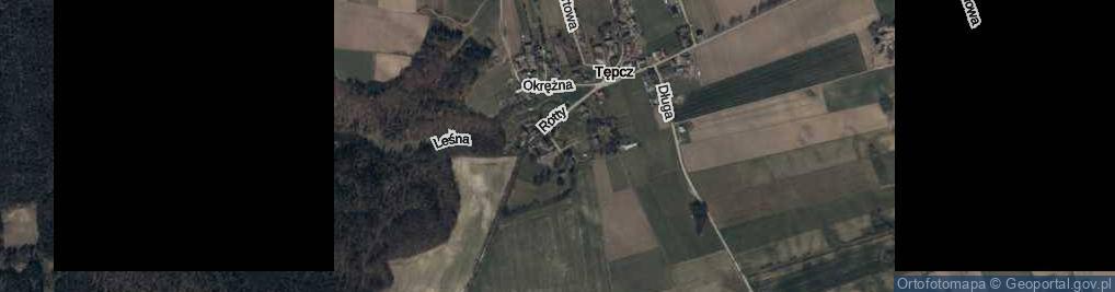 Zdjęcie satelitarne Pałacowa ul.