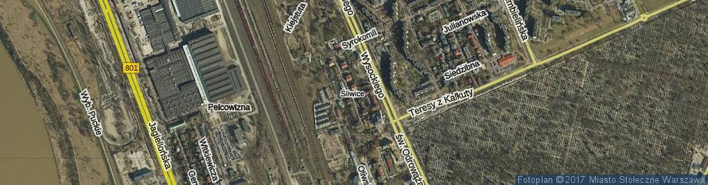 Zdjęcie satelitarne Palestyńska ul.