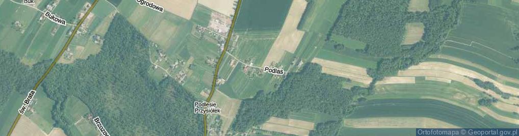 Zdjęcie satelitarne Podlas ul.