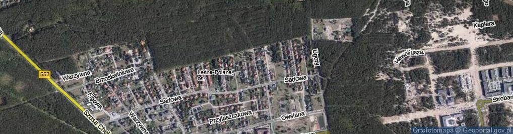 Zdjęcie satelitarne Pomarańczy ul.