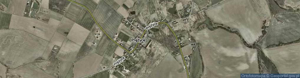 Zdjęcie satelitarne Prężyce ul.