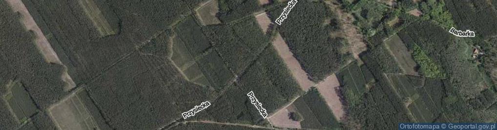 Zdjęcie satelitarne Przysiecka ul.
