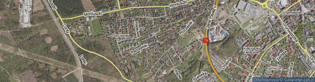 Zdjęcie satelitarne Pszczelnik ul.