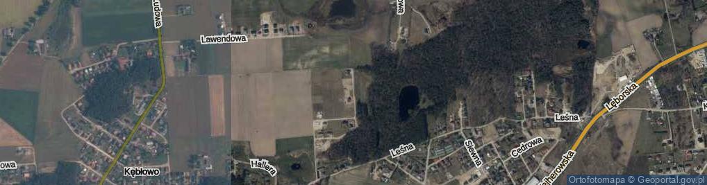 Zdjęcie satelitarne Pszeniczna ul.