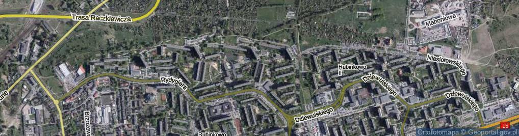 Zdjęcie satelitarne Rakowicza Franciszka Tadeusza ul.