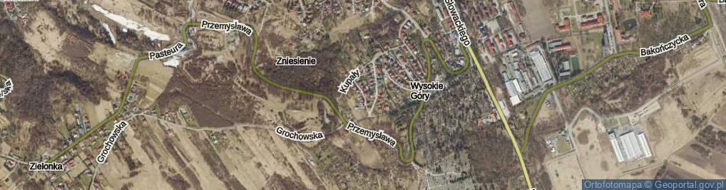 Zdjęcie satelitarne Regera Witolda ul.