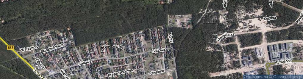Zdjęcie satelitarne Renklodowa ul.