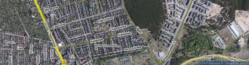 Zdjęcie satelitarne Rumiankowa ul.