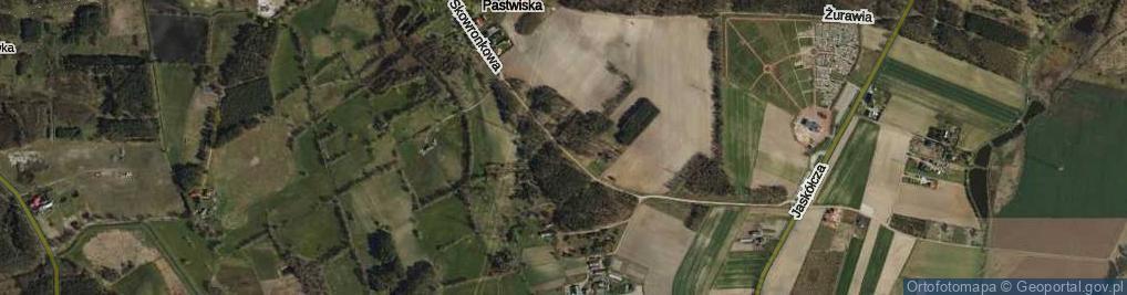 Zdjęcie satelitarne Skowronkowa ul.