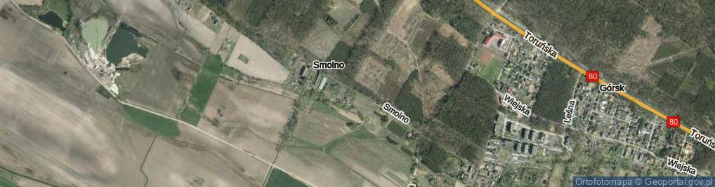 Zdjęcie satelitarne Smolno ul.