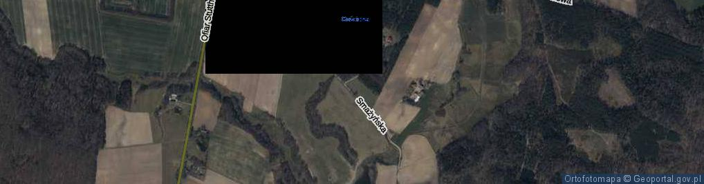 Zdjęcie satelitarne Smażyńska ul.