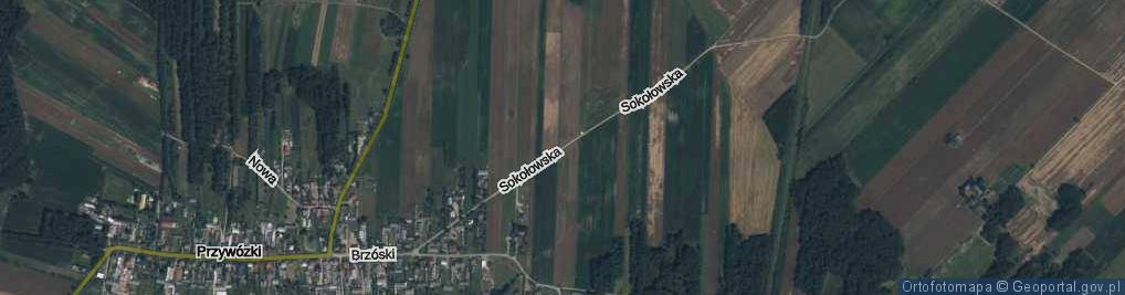 Zdjęcie satelitarne Sokołowska ul.