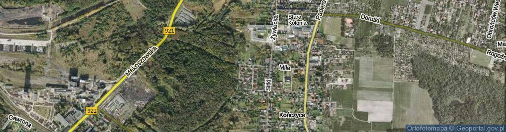 Zdjęcie satelitarne Stara Kolonia ul.