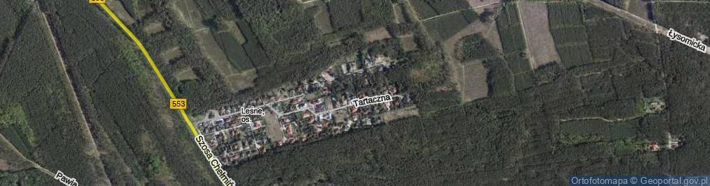 Zdjęcie satelitarne Szyszkowa ul.