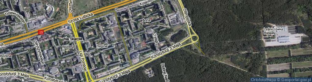 Zdjęcie satelitarne Teligi Leonida ul.