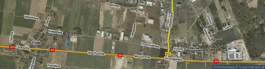 Zdjęcie satelitarne Usługowa ul.
