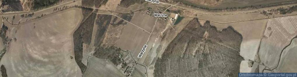 Zdjęcie satelitarne Warzyna ul.