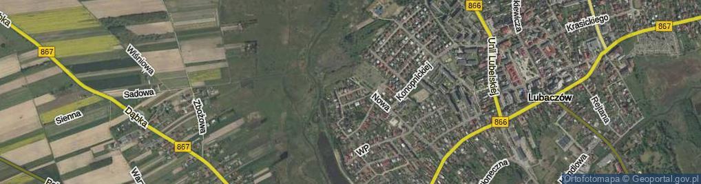 Zdjęcie satelitarne Witwickiego Władysława, prof. ul.