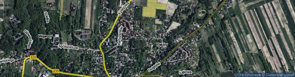 Zdjęcie satelitarne Witkiewicza Jana Koszczyca ul.