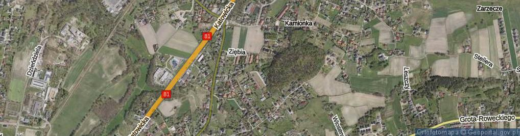 Zdjęcie satelitarne Ziębia ul.
