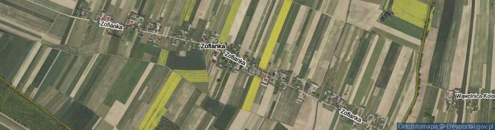 Zdjęcie satelitarne Zofianka ul.