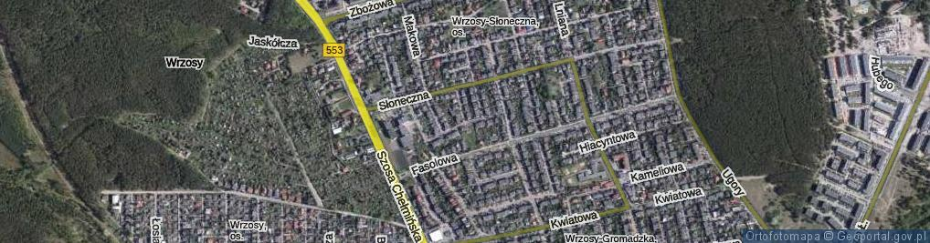 Zdjęcie satelitarne Żytnia ul.